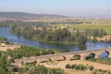 spanish barbel river