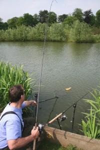 Big Crucian Carp Fishing