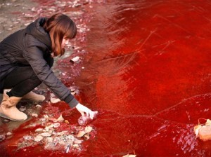water-pollution-china-3-537x4021