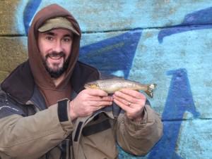 Urban Don Brown Trout