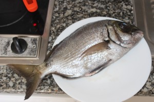 A sargo of a around a pound makes a good dinner