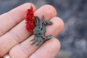 Marukyu crabs